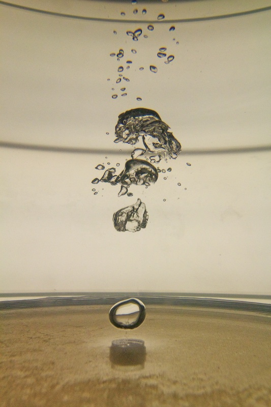 bass bubble chamber detail